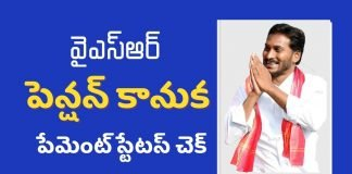 ysr pension kanuka status