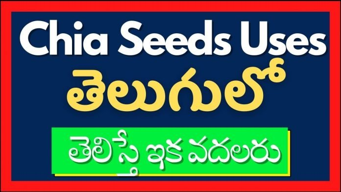 Chia Seeds In Telugu 2021